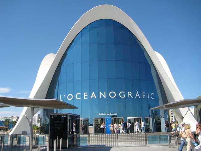 oceanogr fico de valencia el zoo marino m s grande de europa